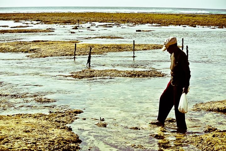 """""""Dai un pesce a un uomo e lo nutrirai per un giorno. Insegnagli a pescare e lo nutrirai per tutta la vita"""""""